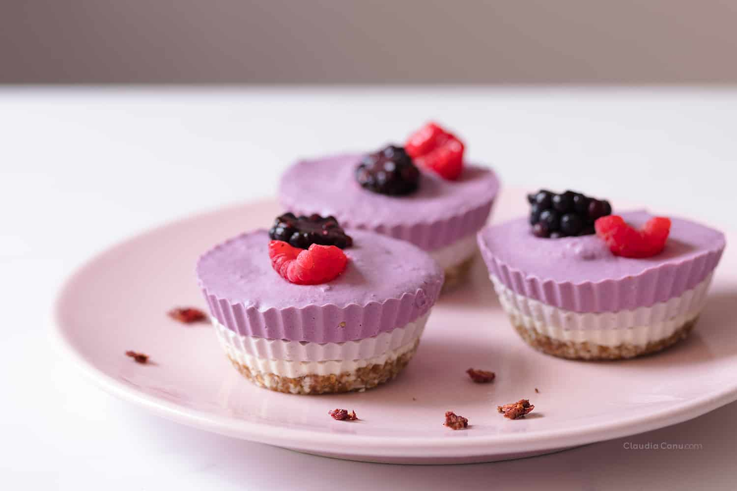 Vegan no bake tricolor mini cheesecakes