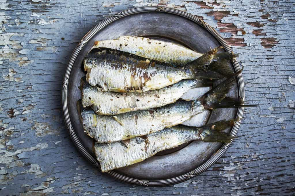 Sardines, one of the ingredients you should always keep in your kitchen